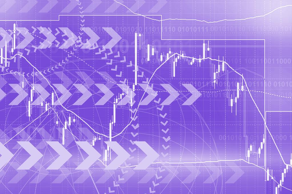 股票投资人